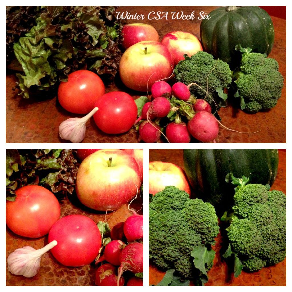 Winter CSA Week Six Collage