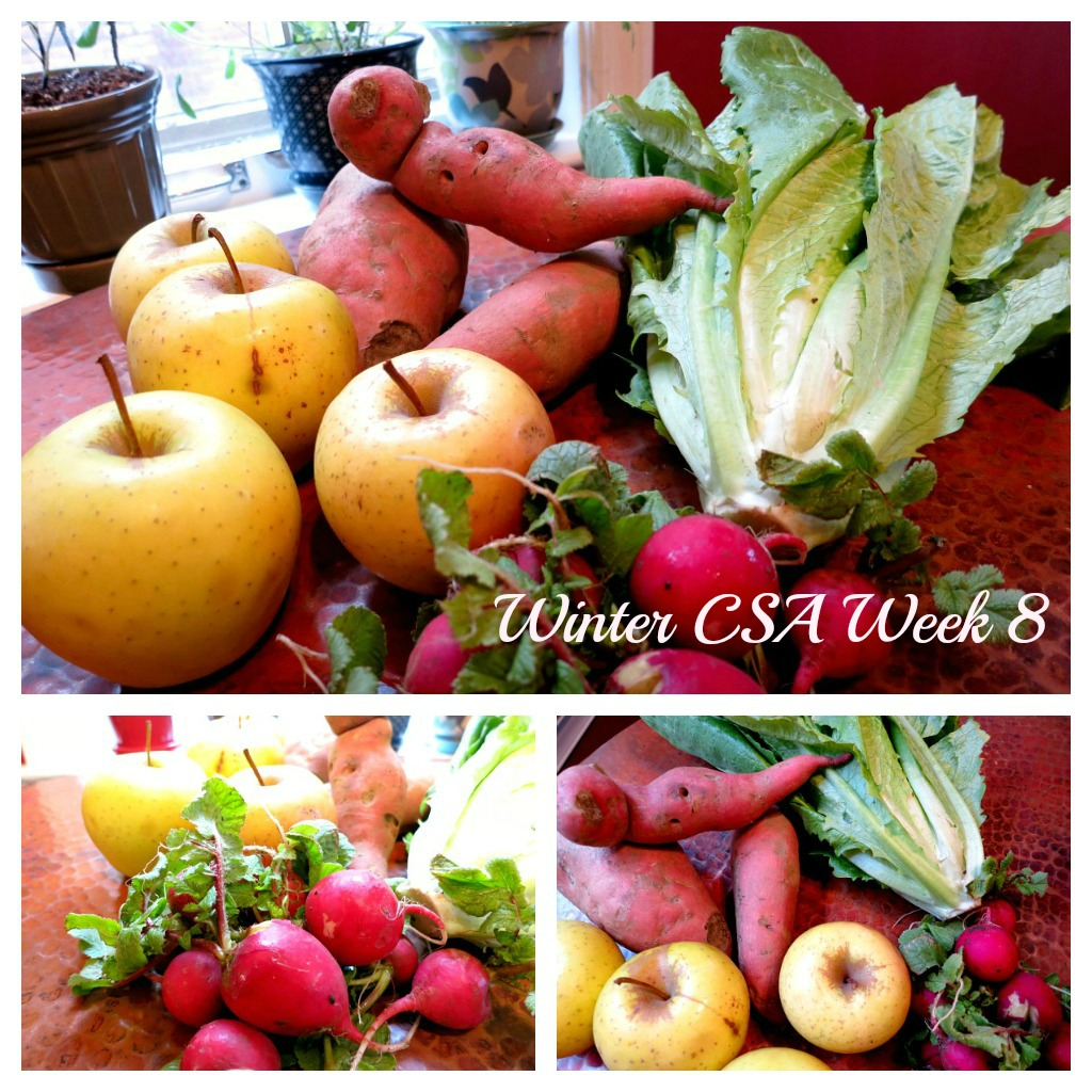 Winter CSA Week 8 Collage