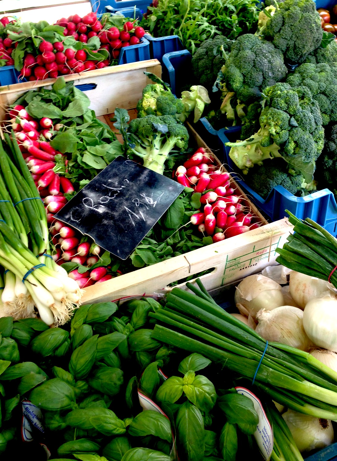 Belgium Farmers Market Greens and Radishes