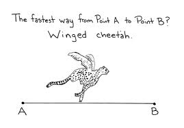 Winged Cheetah