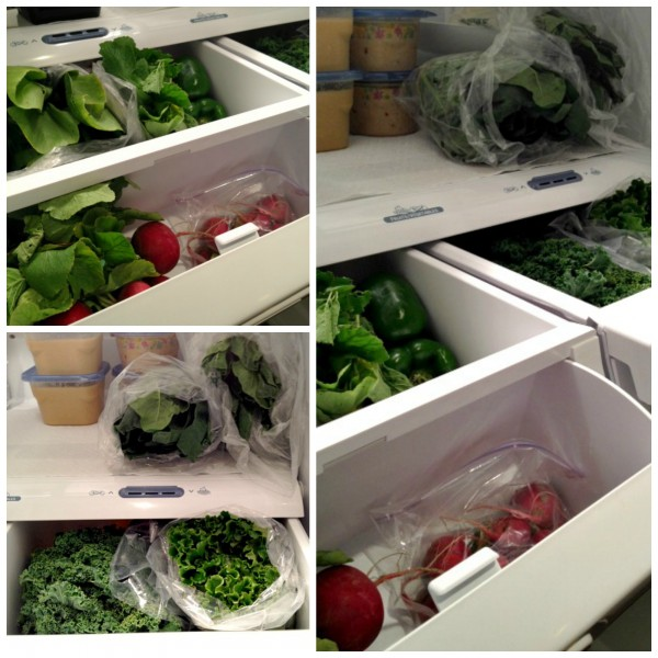 Fridge Greens Collage