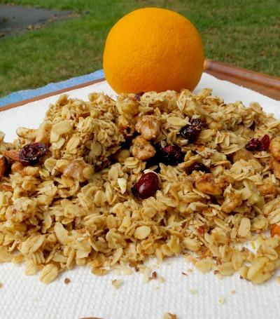 Orange Cranberry Granola Recipe - Clean Eats, Fast Feets