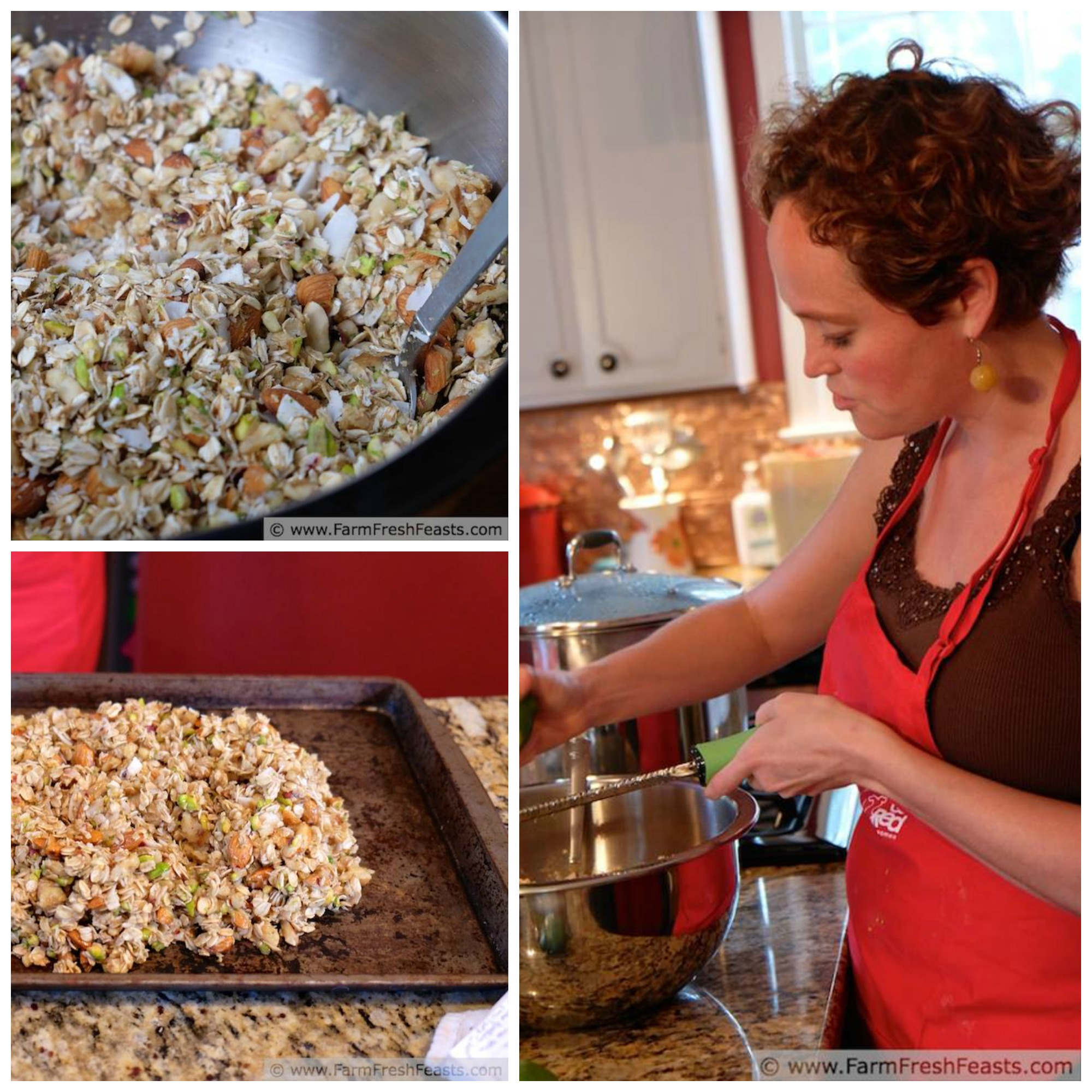 Coconut Lime Pineapple Granola Collage