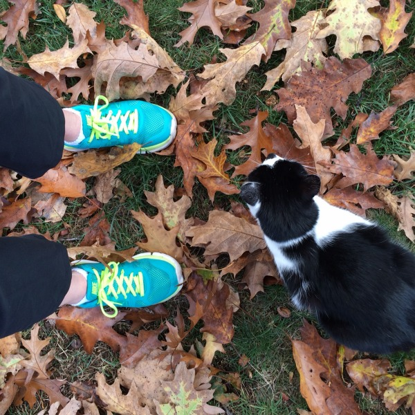 Meg Sneakers and Oscar Running