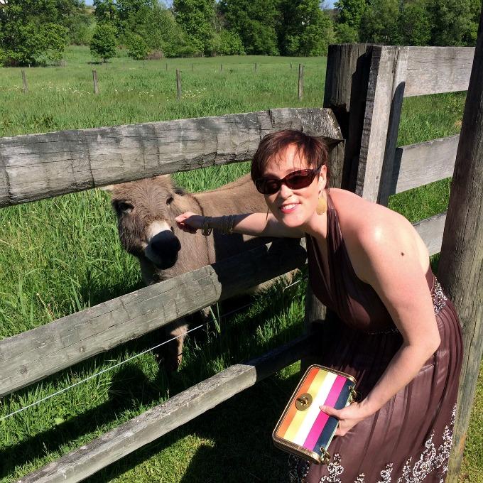 Meg and the Little Ass (Donkey, MiniPony)