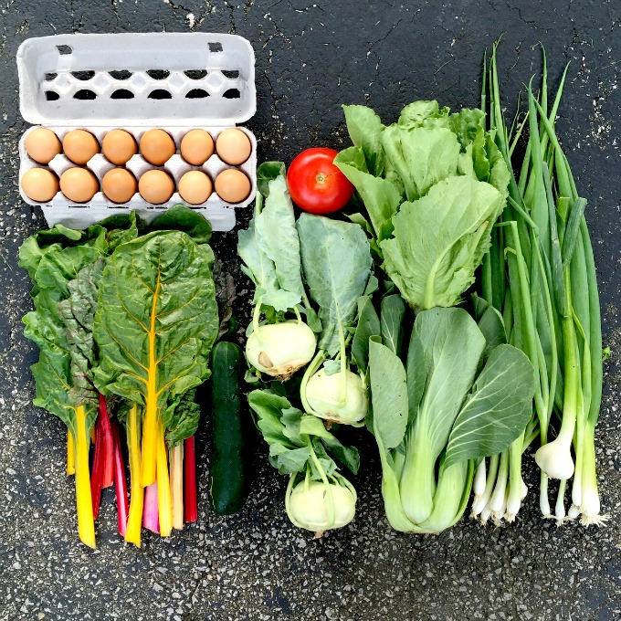 Summer 2015 CSA Week Three