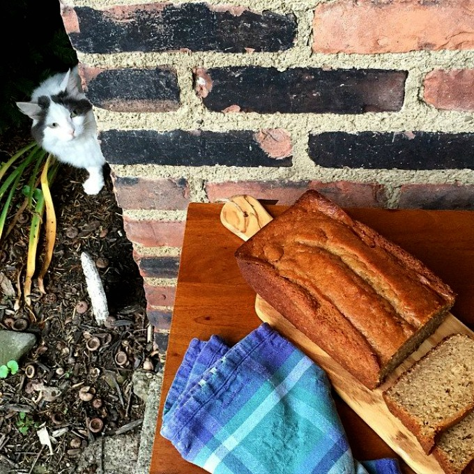Sam and the Peanut Butter Bread 2