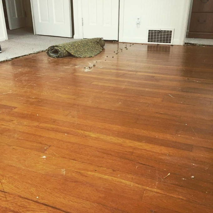 Hardwood Floors - Pulling Up Carpet