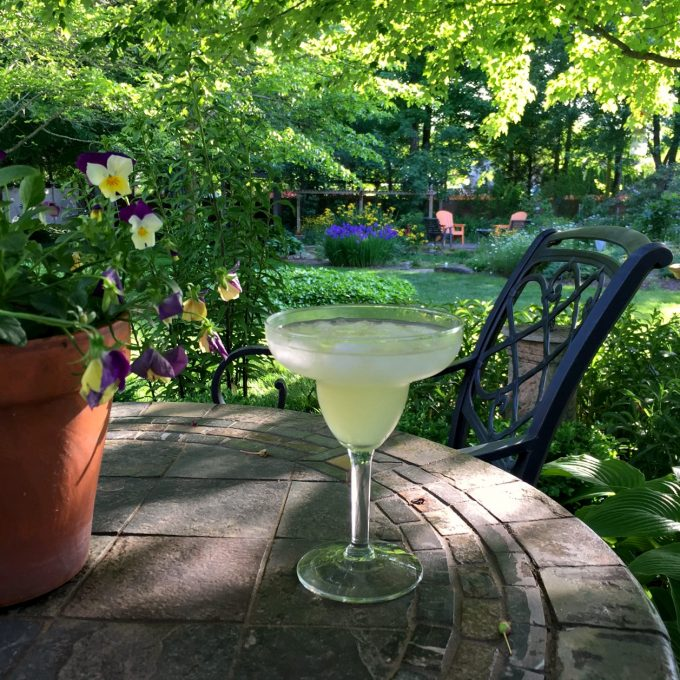 Margarita in the In Laws Backyard