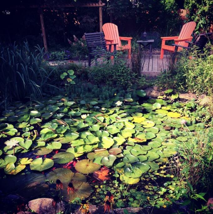 In Laws Backyard Pond