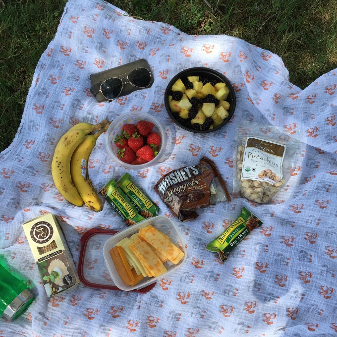 Picnic with Juli and Stefan at Chippewa Lake